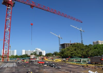 Cranes are flying! 332 Cocoanut & The BLVD - May 30th