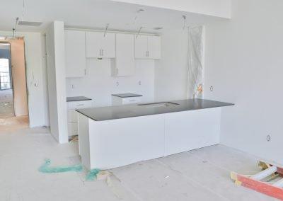 309 Kitchen March 19 2020